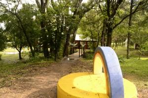Reforestación en Tashigar Sur: una experiencia con 5 años de continuidad