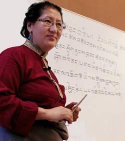 Entrenamiento Tradicional ´online´ de Medicina Tibetana, 12 de Febrero, 2019